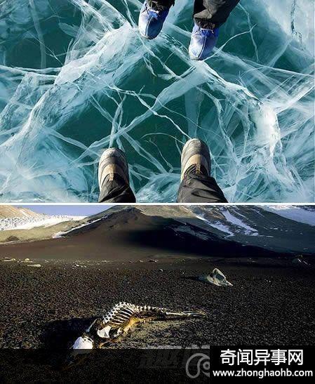 南极洲干谷