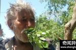 男子吃树25年超健康 从未生过病